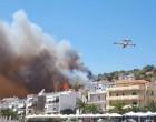 Φωτιά στην περιοχή Άγιος Νικόλαος στην Σαλαμίνα – Δίπλα στα σπίτια οι φλόγες
